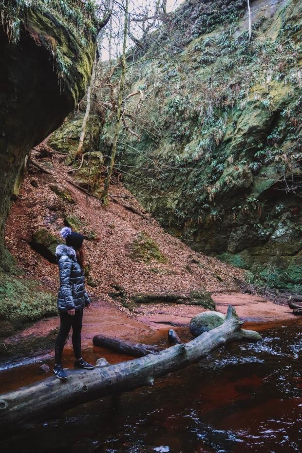 The Devils Pulpit - Finnich Glen - Scotland 4